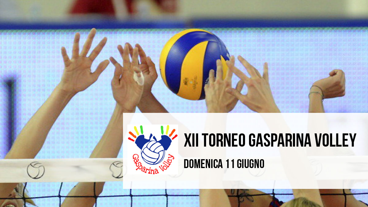 gasparina volley